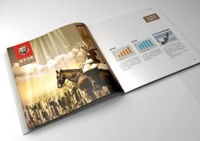 炊具行业企业画册设计/爱菲尔